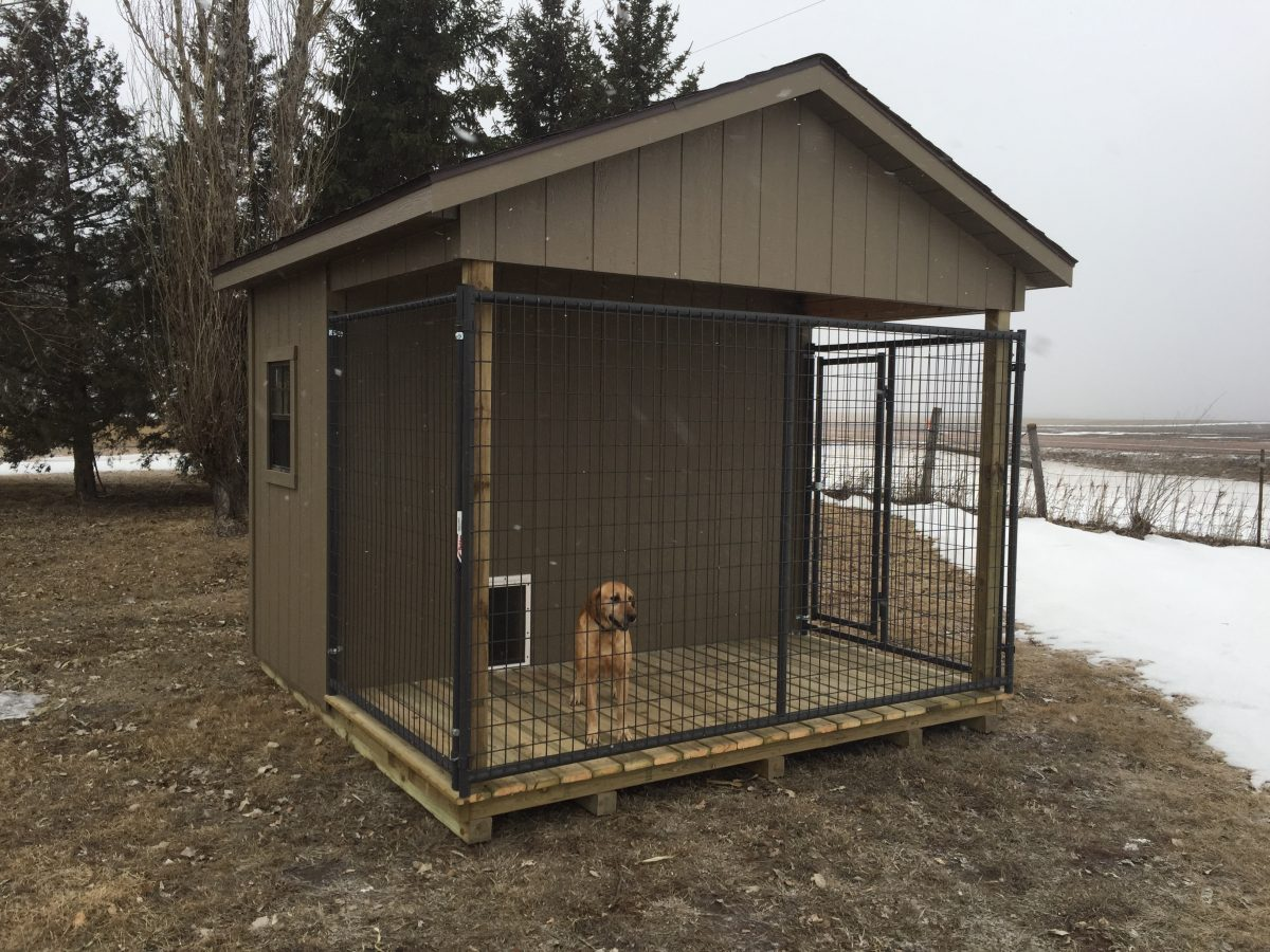Dog Kennel Quality Storage Buildings