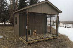 custom rent to own dog kennels in south dakota