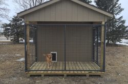 safe easy clean rent to own dog kennels in south dakota