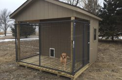 prefab rent to own dog kennels for sale